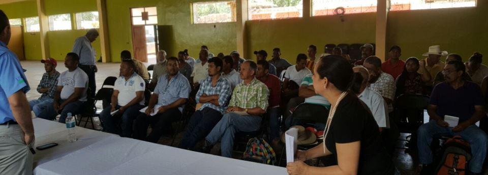 Reunión con productores para conformar la Cadena del Frijol del Departamento de Francisco Morazán