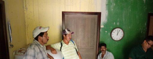 Análisis al frijol de productores del Municipio de Omoa, Cortes